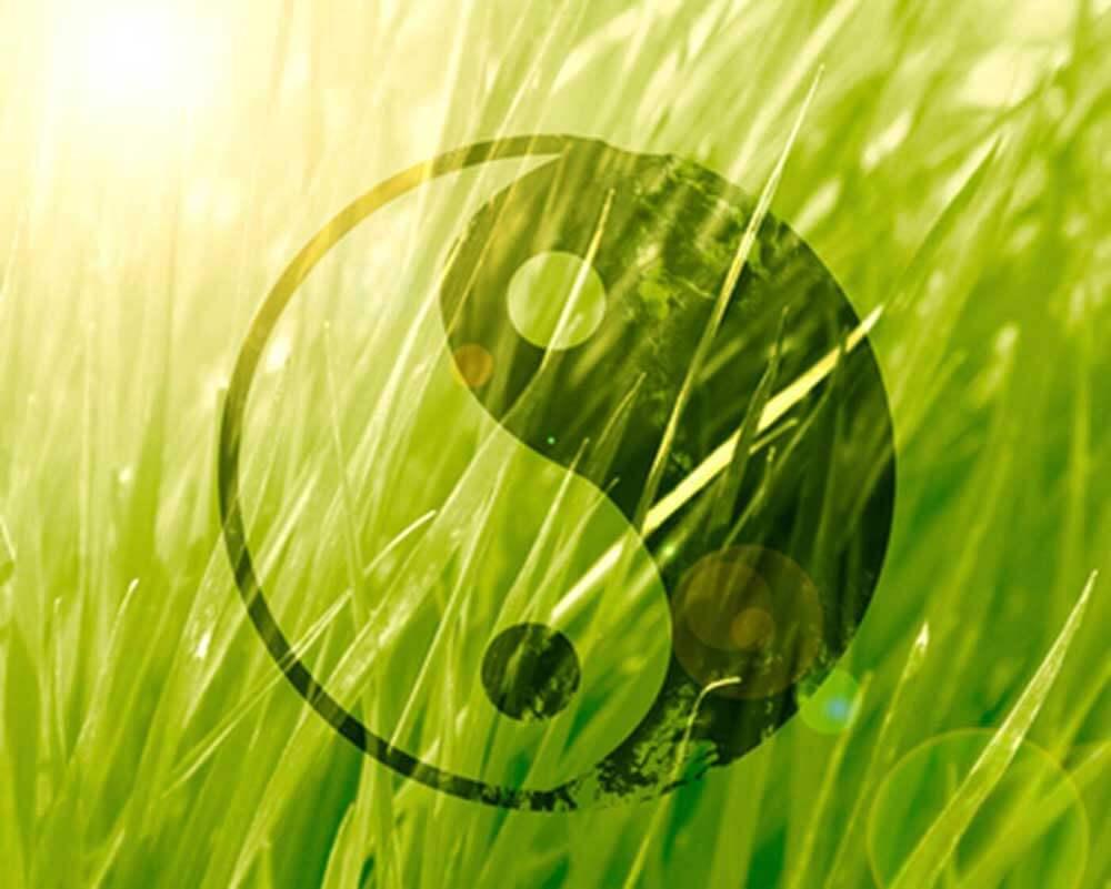yin-yang grass